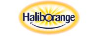 Haliorange Logo